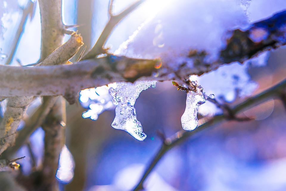 winter-1884334_960_720