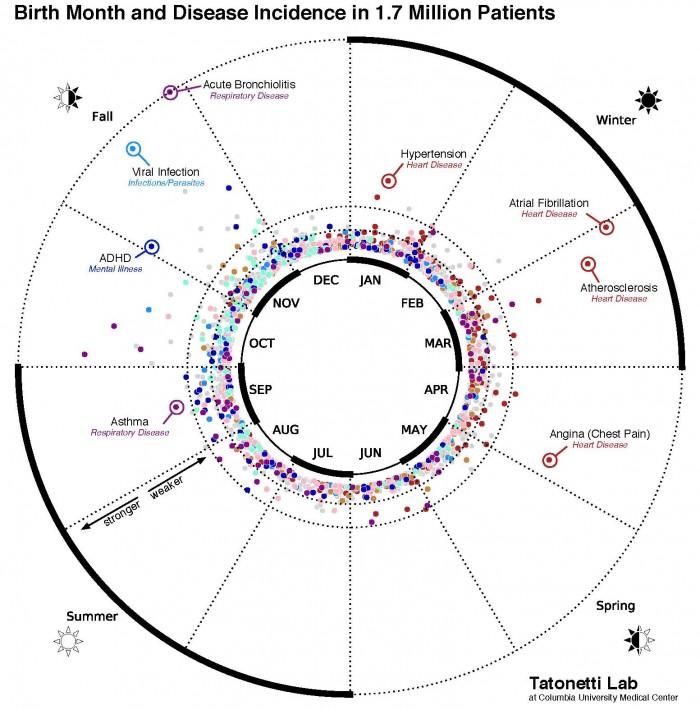 生まれ月別で病気の種類を研究! コロンビア大学