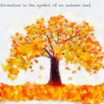 Code no.205 天秤座25度 秋の葉の象徴が伝える情報
