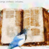 Code no.79 双子座19度 大きな古典書物
