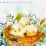 Code no.83 双子座23度 木の高いところにある巣の中の3羽の雛